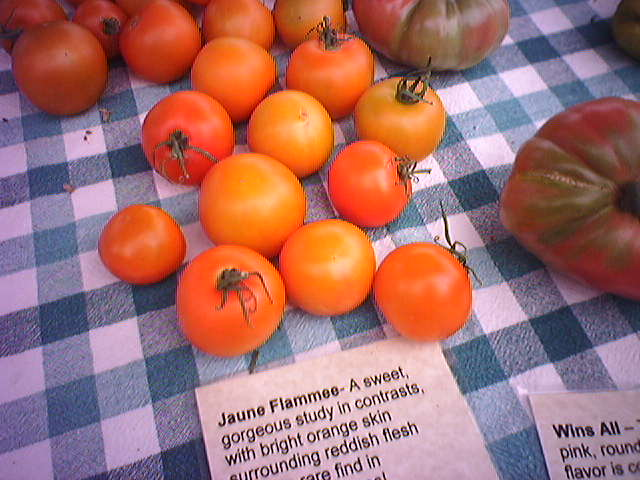 Jaune Flamée Heirloom Tomatoes