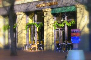Caffe_umbria